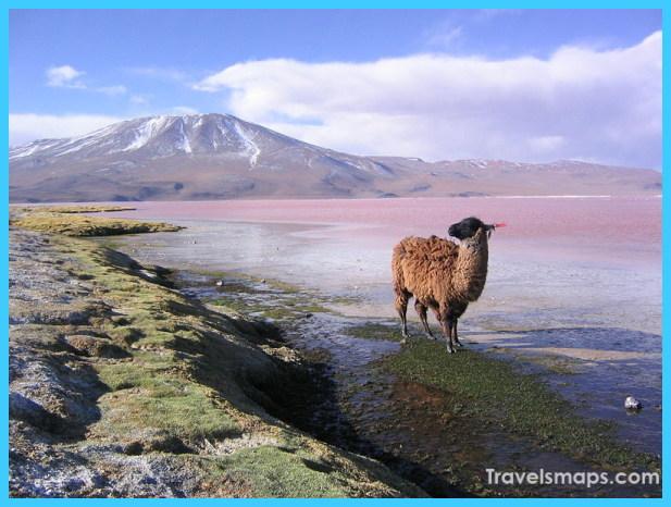 Travel to Bolivia_2.jpg