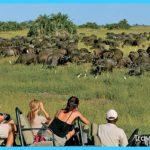 Travel to Botswana_11.jpg
