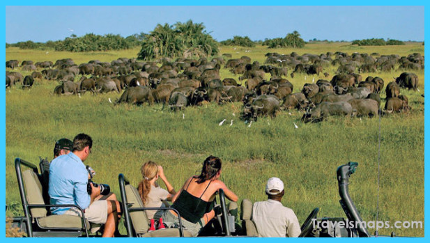 Travel to Botswana_11.jpg