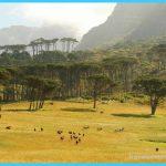 Travel to Botswana_24.jpg