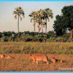Travel to Botswana_5.jpg