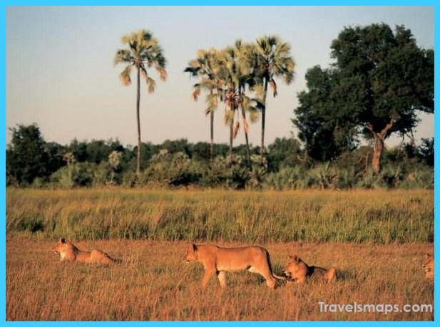 Travel to Botswana_5.jpg