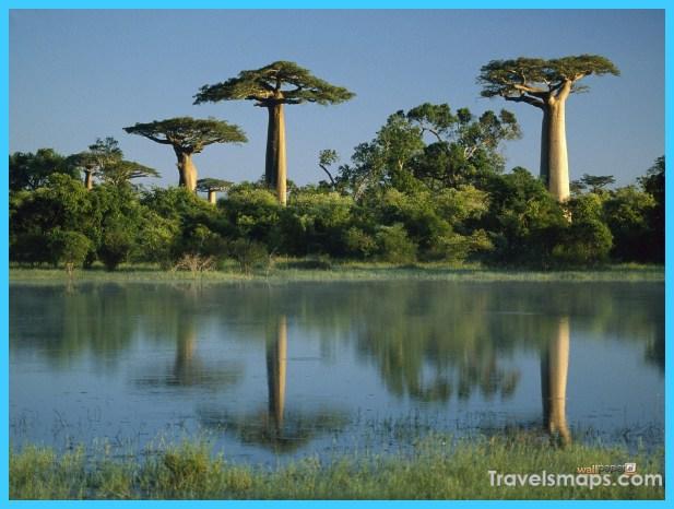 Travel to Madagascar_20.jpg