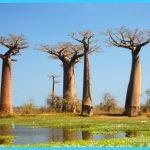 Travel to Madagascar_4.jpg