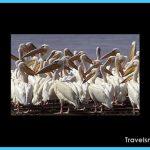 Travel to Mauritania_14.jpg