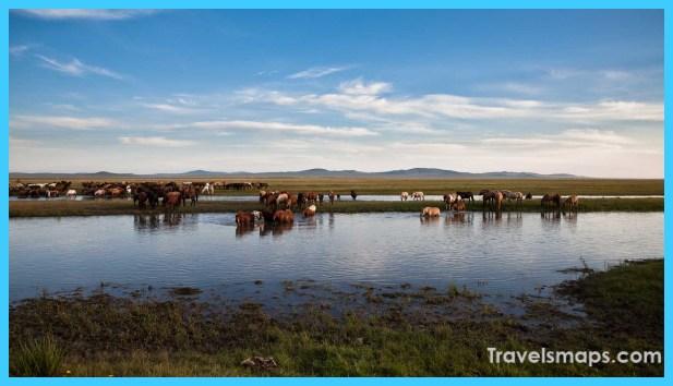 Travel to Mongolia_0.jpg