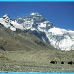 Travel to Nepal_3.jpg