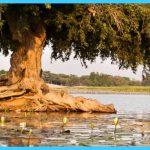 Travel to Niger_1.jpg