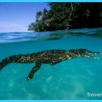Travel to Papua New Guinea_0.jpg