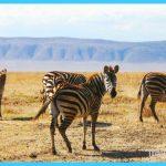 Travel to Tanzania_1.jpg