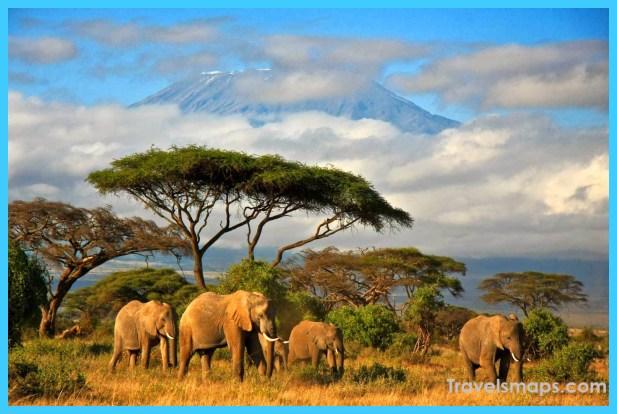Travel to Tanzania_29.jpg