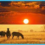 Travel to Uganda_10.jpg