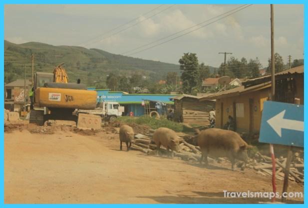 Travel to Uganda_18.jpg