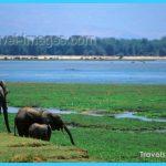 Travel to Zimbabwe_2.jpg