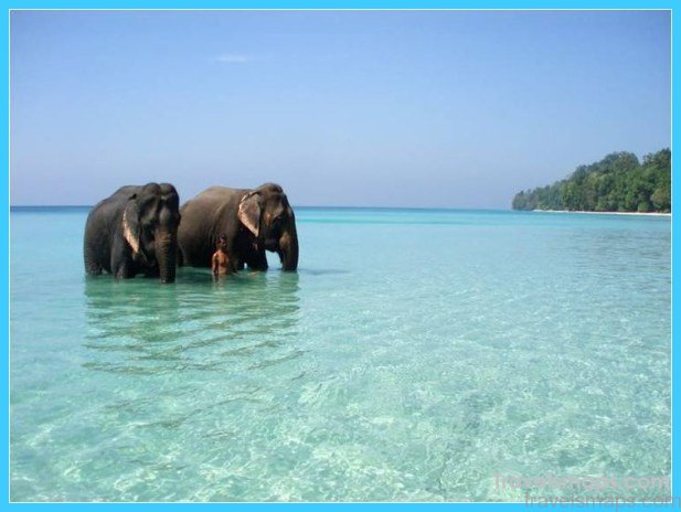 Andaman and Nicobar Islands – The Perfect Locale for an Island Vacation_1.jpg