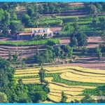 Revive your soul – Breathtaking views at Kasauli_2.jpg