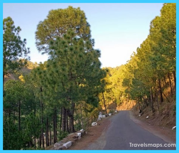 Revive your soul – Breathtaking views at Kasauli_26.jpg