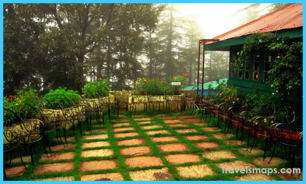 Revive your soul – Breathtaking views at Kasauli_27.jpg