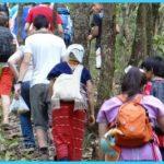 Ban-Huay-Hee-Trek-Northern-Thailand-274333-1100px-16x7.jpg