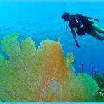 guantanamo-diving-center.jpg