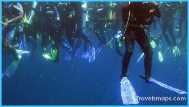 http%3A%2F%2Fcdn.cnn.com%2Fcnnnext%2Fdam%2Fassets%2F170405134039-10-best-dives---top-pic.jpg