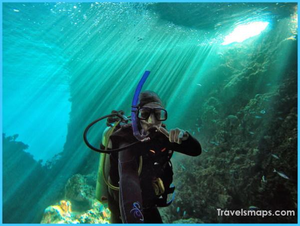 Scuba-Dive-Poor-Knights-Islands_optimized.jpg
