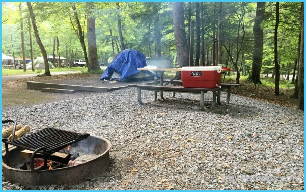 5 Great Reasons to Give Camping a Go_26.jpg