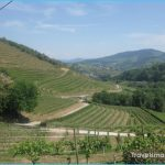 Experience The Enhanced Factors Of Knowing Cycling Route About Chianti_11.jpg