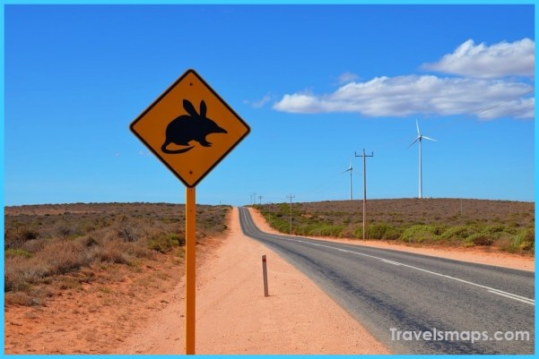 Shocking Things in Australia that Fascinate the Travellers_0.jpg
