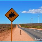 Shocking Things in Australia that Fascinate the Travellers_28.jpg
