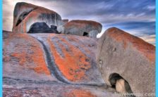 Shocking Things in Australia that Fascinate the Travellers_30.jpg