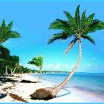 BEAUTIFUL PUNTA CANA DOMINICAN REPUBLIC_23.jpg