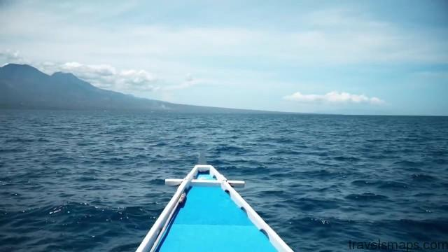 diving with sea turtles in apo island 38