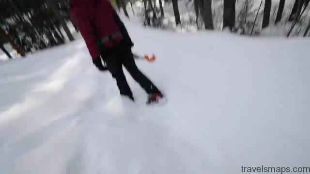 ice climbing frozen waterfall jasper alberta 17