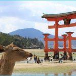 Miyajima Island_3.jpg