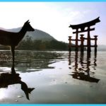 Miyajima Island_4.jpg