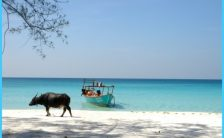 PARTYING IN CAMBODIA - WILD KOH TOCH BEACH PARTY_27.jpg