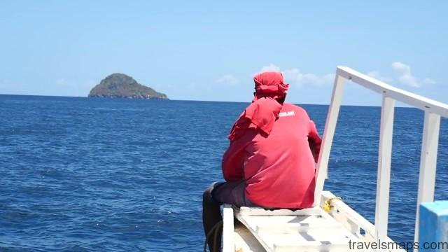 white tip sharks in malapascua 09