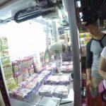 win a fish at the japanese arcade 12