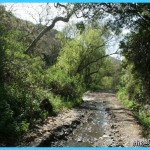 Sullivan Canyon Trail | Los Angeles | Hikespeak.com