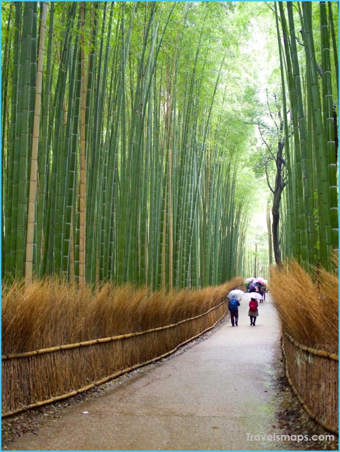 Kyoto Highlights_9.jpg