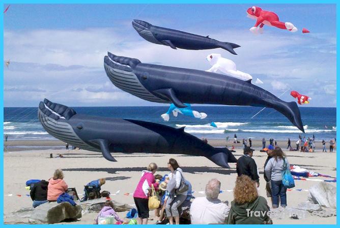 Lincoln City Oregon Summer Kite Festival Gets Unleashed