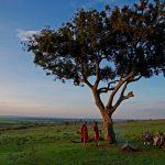 sanctuary olonana kenya 7